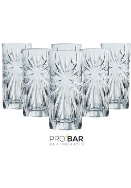 Oasis Tumbler Glasses (set of 6)